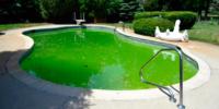 Agua de piscina turbia o verde